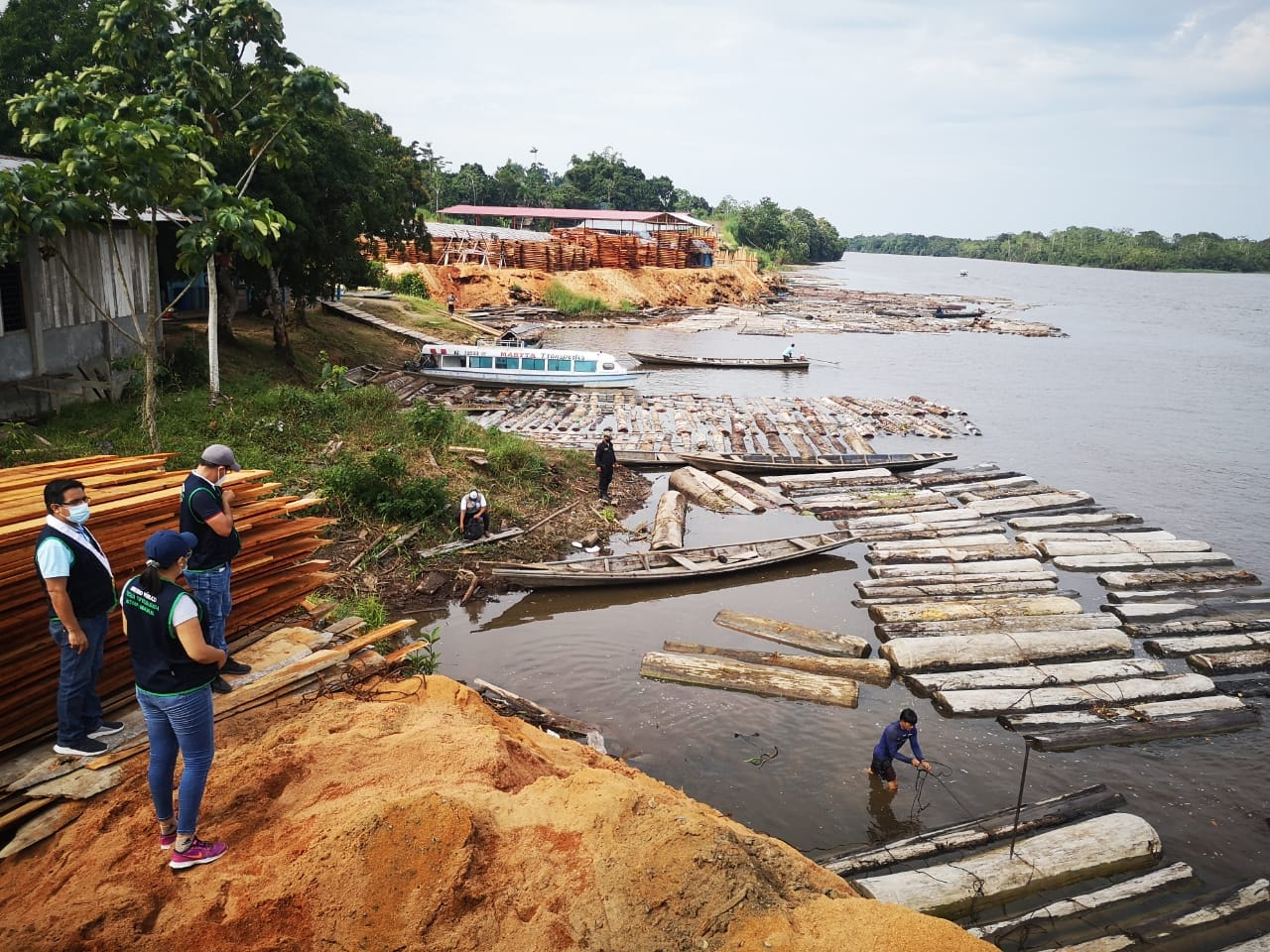 1,043 m3 of logs and lumber including Spanish Cedar and Cumala seized at two sawmills in Mazán