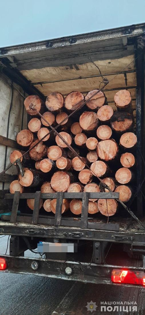 40m3 of Pine logs seized near Zhytomyr