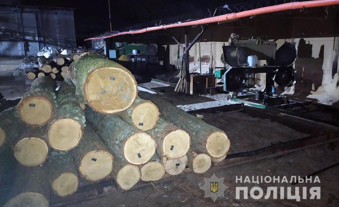 45m3 of Oak logs seized in Zhytomyr