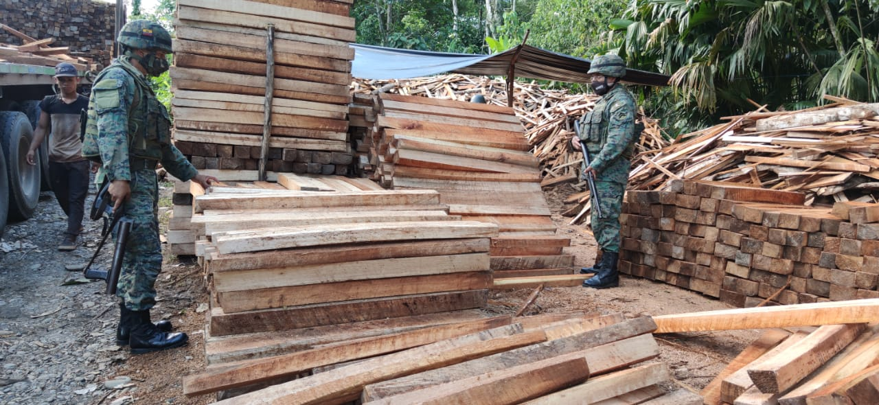 Balsa lumber seized at a sawmill in Itaya