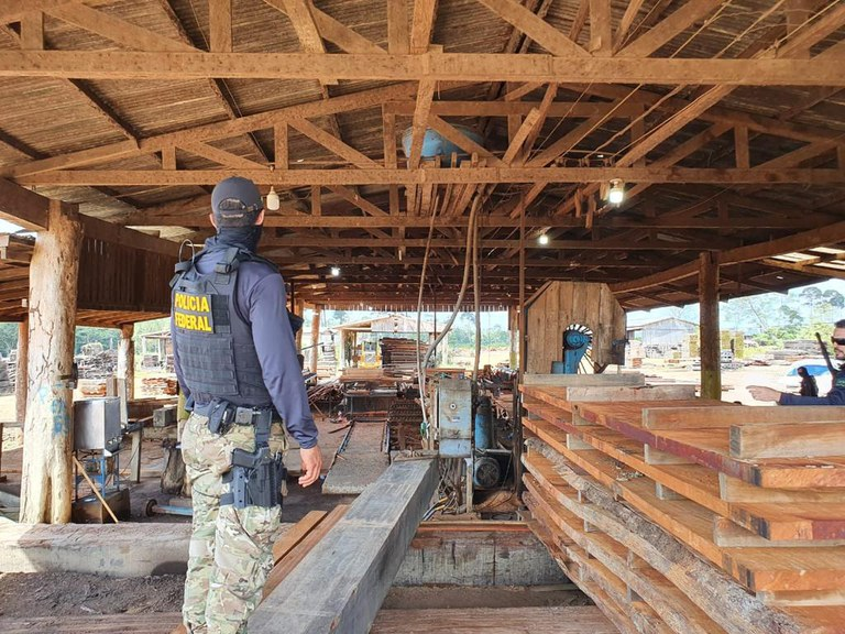 Four sawmills closed in Matupi for allegedly operating illegally