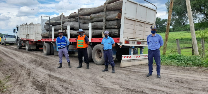 Truckload of Guayacán logs seized in Las Garcitas