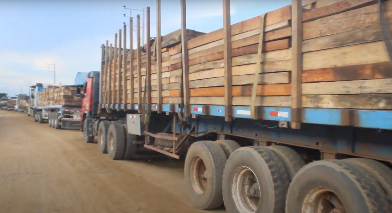 23m3 of lumber seized in Puerto Maldonado