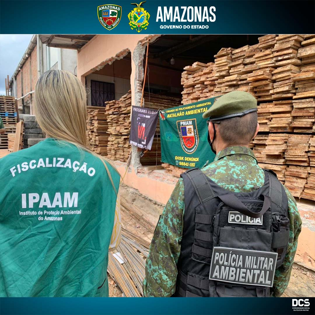 One arrested and 40m3 of lumber seized in Tancredo Neves