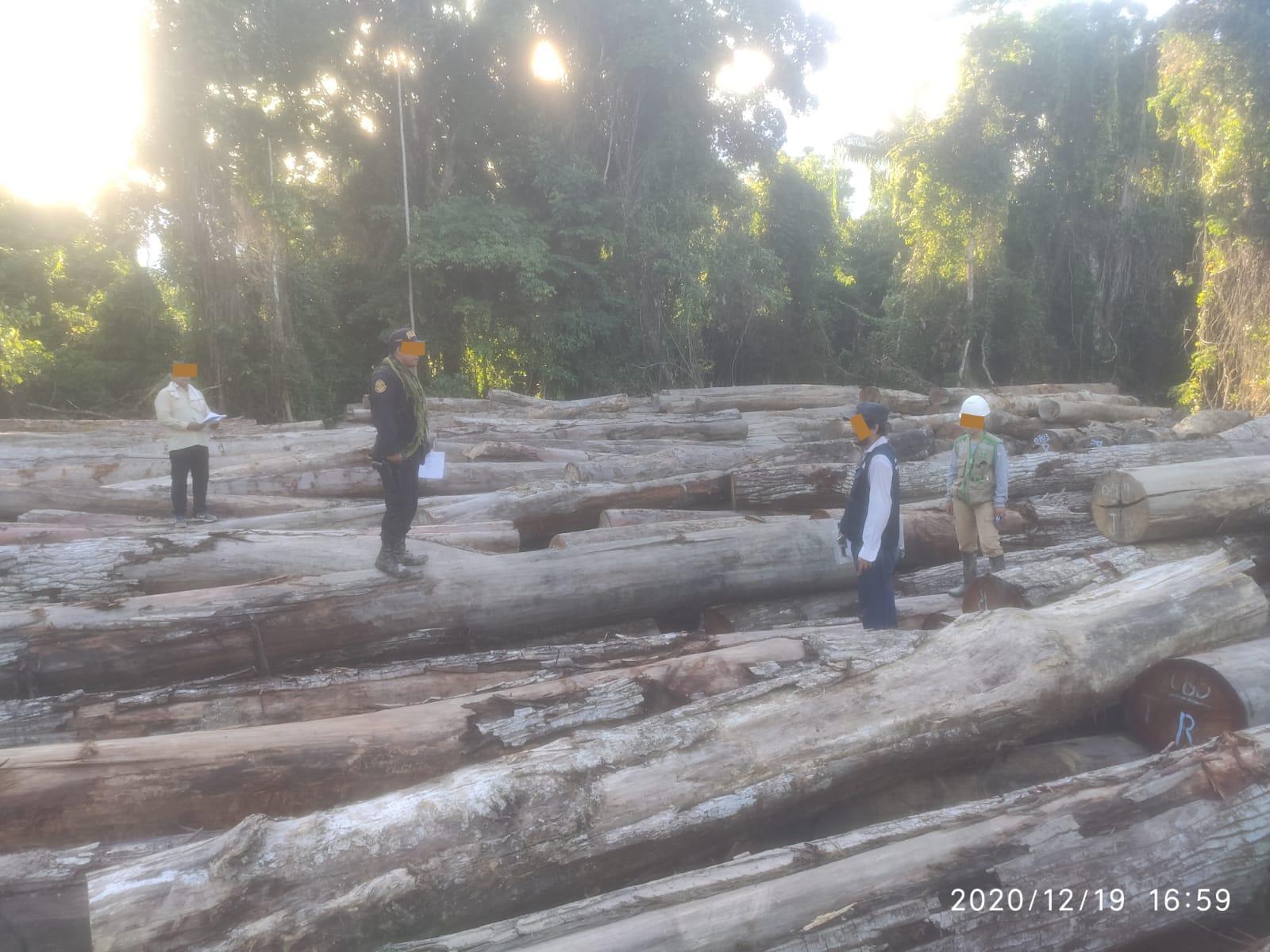 2,325m3 of logs seized in the Native Community of Fatima
