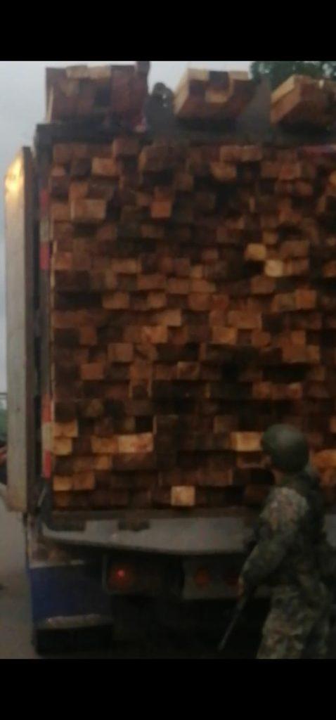 Truckload of illegal Balsa wood seized in San Lorenzo